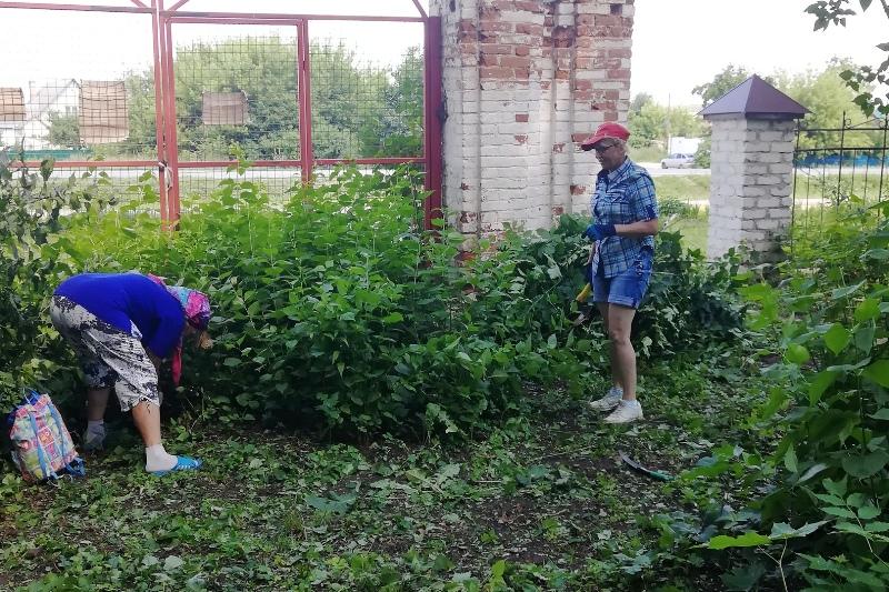 Старый парк в Троекурово. Субботник 22 июня 2019 г.