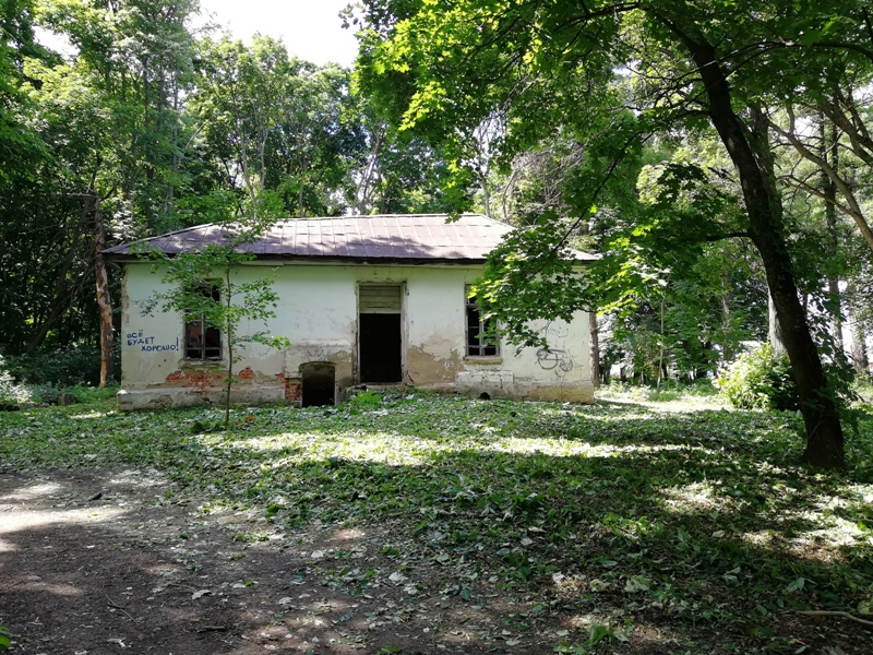 Старый парк в Троекурово 22 июня 2019 г.