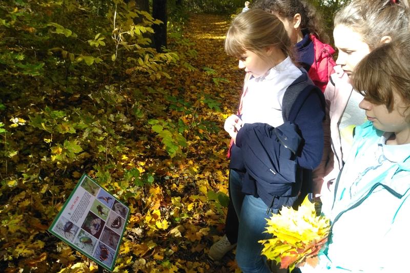 Школьники пришли в старый парк на экскурсию