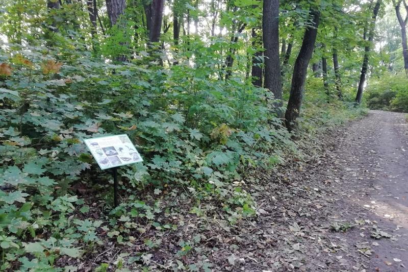 информационная табличка в парке с. Троекурово